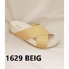 1629 BEIG